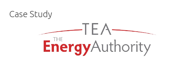 Case Study: The Energy Authority